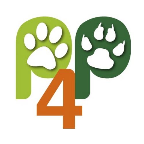 Dronspot Katze